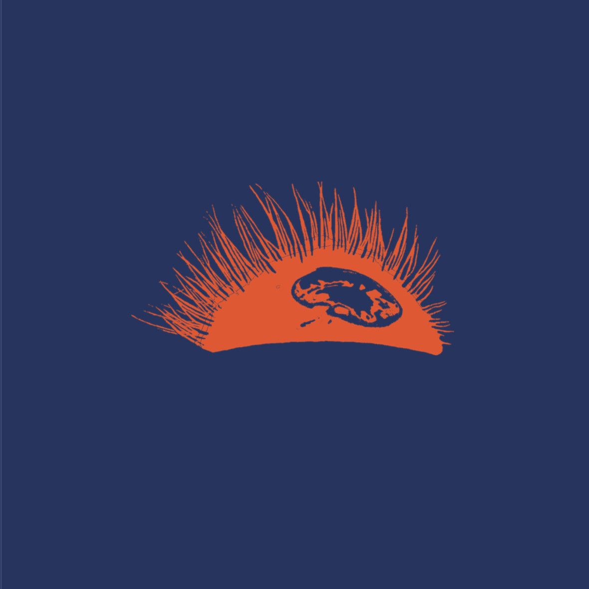 Sunrise Twenty-Twenty (RSD 2020) - The Bleeder Group - Musik - Escho - 9958285603168 - 26/9-2020