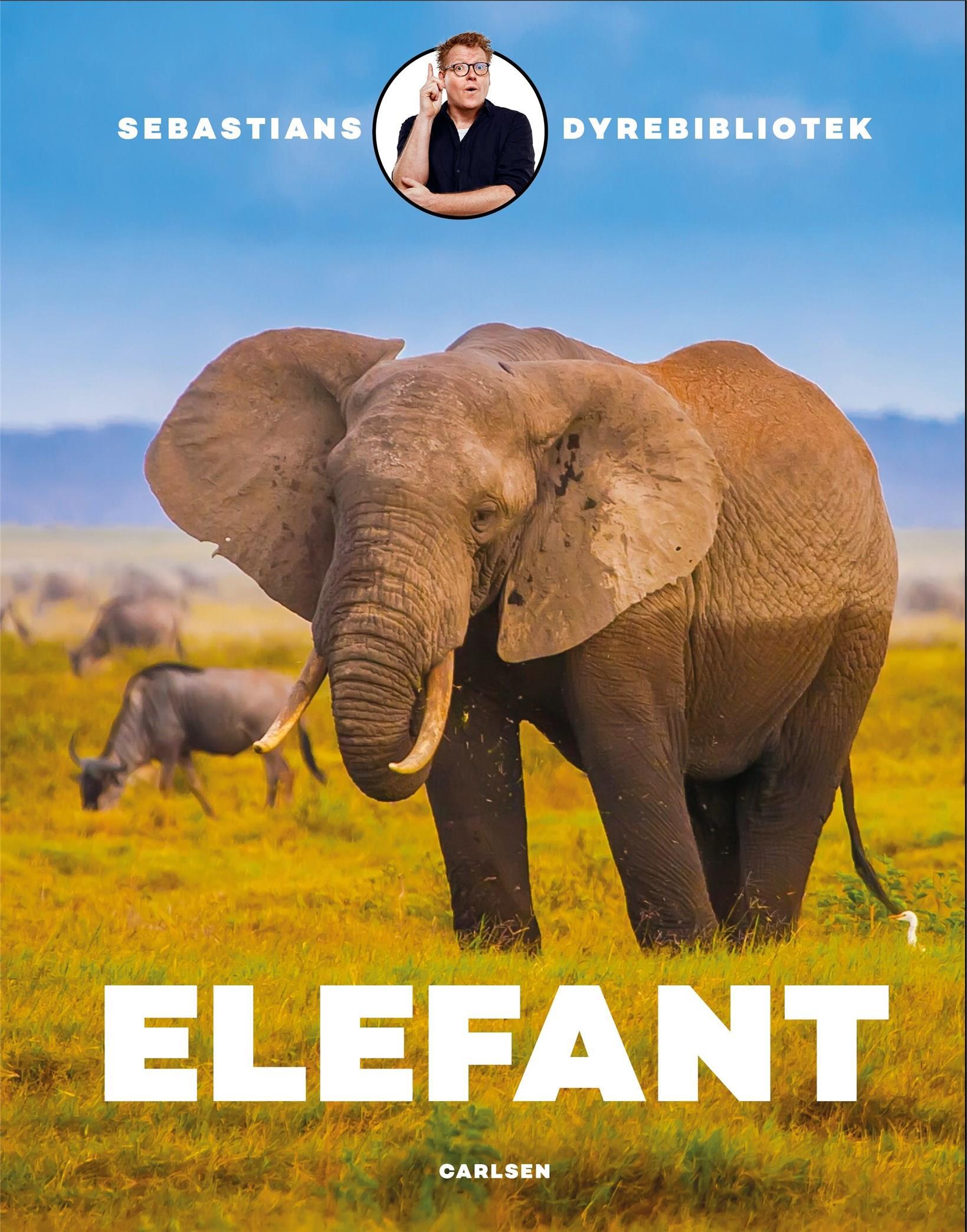 Sebastians dyrebibliotek: Sebastians dyrebibliotek: elefant - Sebastian Klein - Bøger - CARLSEN - 9788711983263 - 3/3-2020