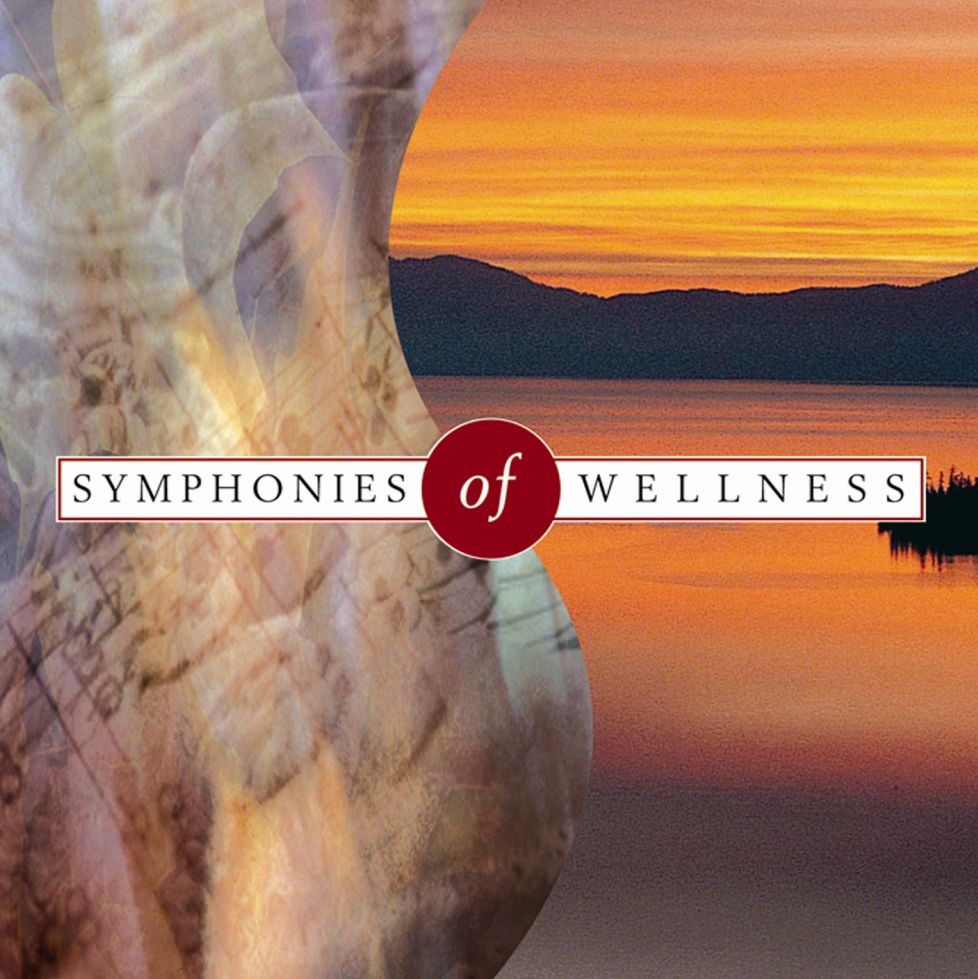 Symphonies of Wellness - Klaus Schønning - Musik - MusicVenture - 5706274001525 - 2008
