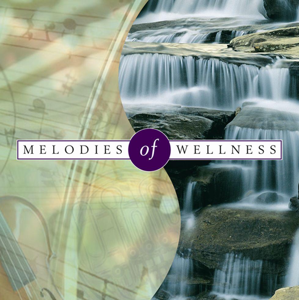 Melodies of Wellness - Klaus Schønning - Musik - MusicVenture - 5706274001884 - 2008